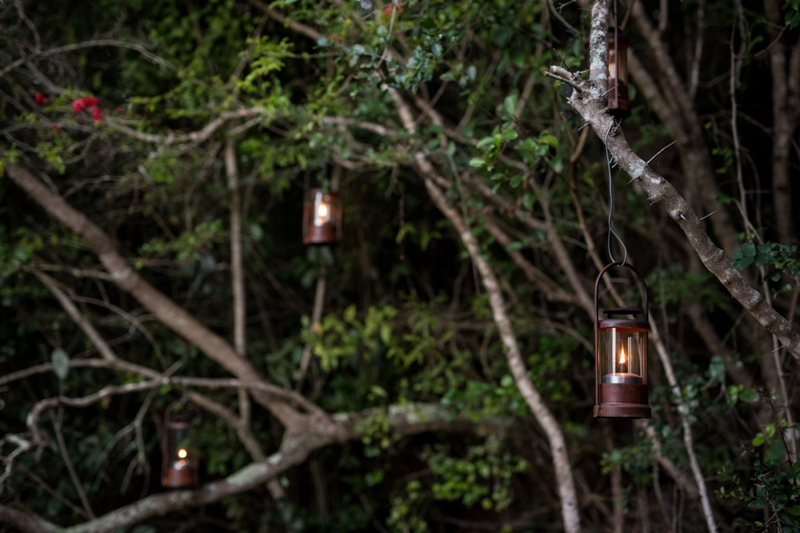 Emily Moon River Lodge Plett Wedding Venue Page and Holmes Photography_0118